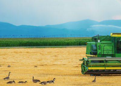 07 DE NOVEMBRO: II Congresso Internacional de Direito Agrário e do Agronegócio da OAB